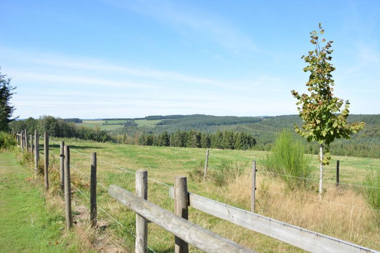 VakantiehuisBelgië - Ardennen, Namen: Le Chalet Likthuus  [9]