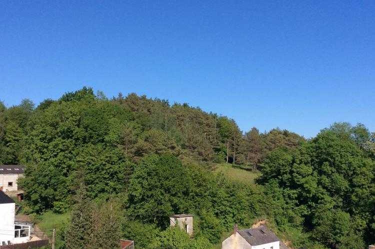 Holiday homeBelgium - Namur: Les Tilleuls  [42]