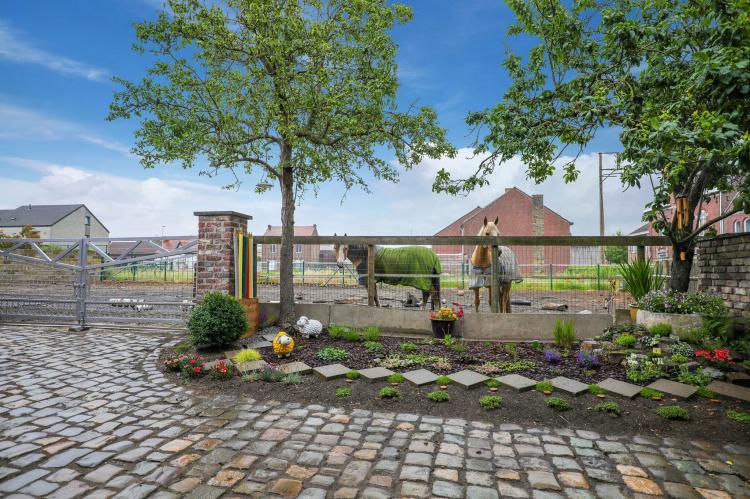 VakantiehuisBelgië - Limburg: Bij Suus onder de wol  [6]