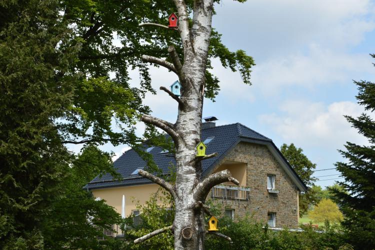 VakantiehuisBelgië - Ardennen, Luik: Haus Annick  [30]