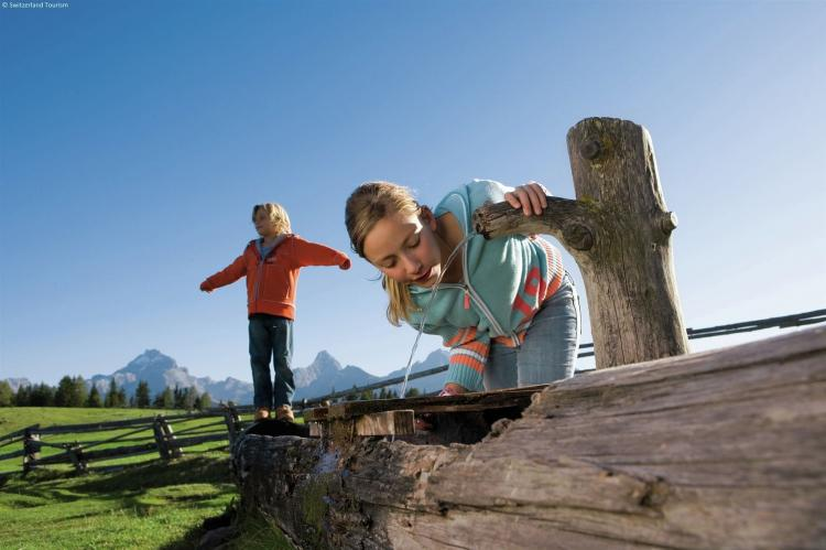 Holiday homeSwitzerland - Wallis/Valais: Residence Edelweiss  [18]