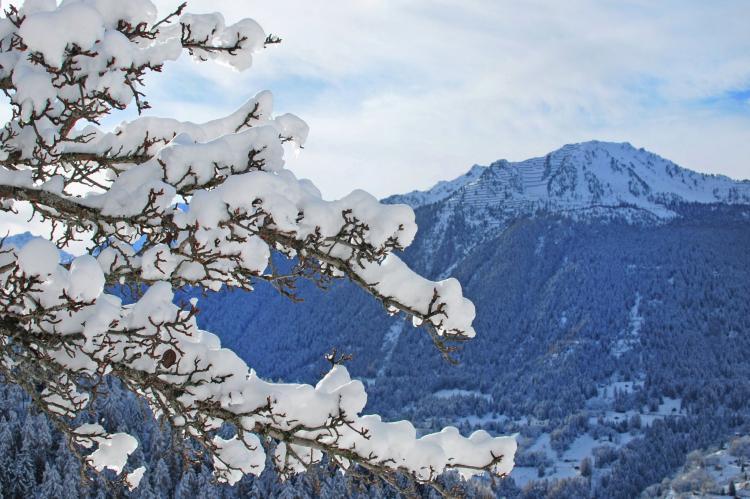 VakantiehuisZwitserland - Wallis/Valais: Nelly CNY01  [14]