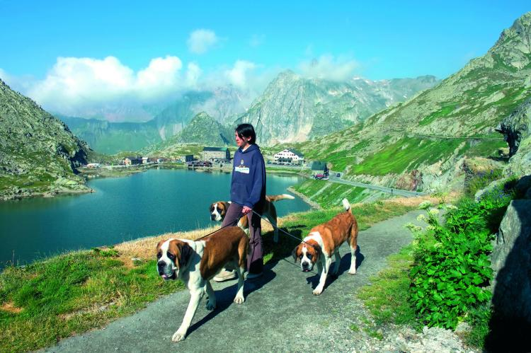 VakantiehuisZwitserland - Wallis/Valais: zur Linde  [22]