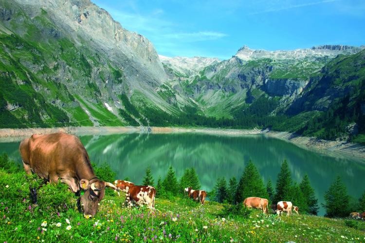 VakantiehuisZwitserland - Wallis/Valais: zur Linde  [26]