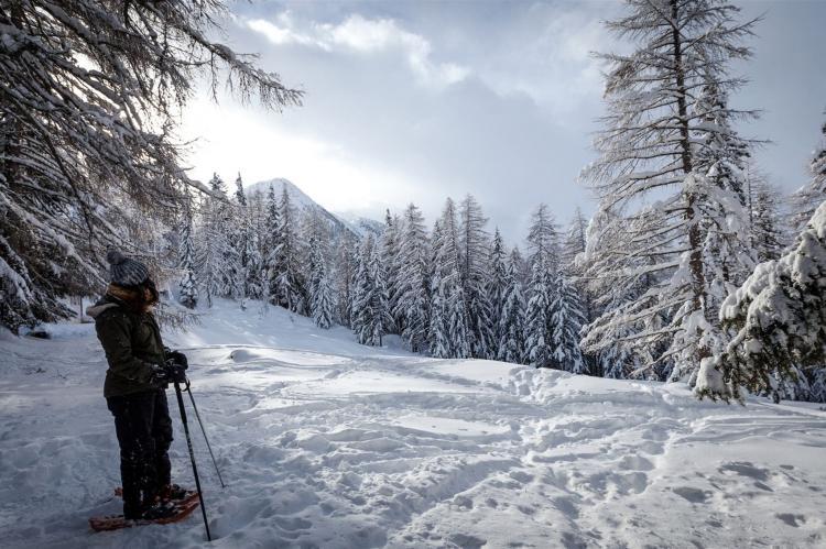 Holiday homeSwitzerland - Wallis/Valais: Sviv  [24]