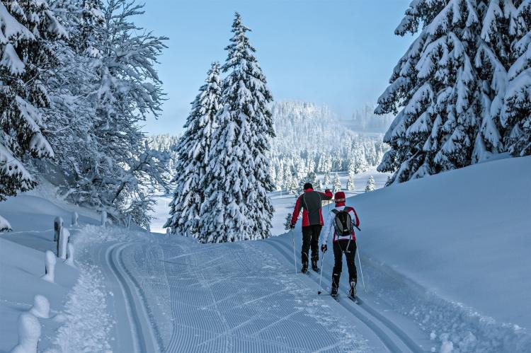 Holiday homeSwitzerland - Wallis/Valais: Chalet Chaud  [33]