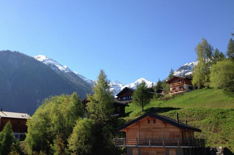 Holiday homeSwitzerland - Wallis/Valais: Ariana  [14]