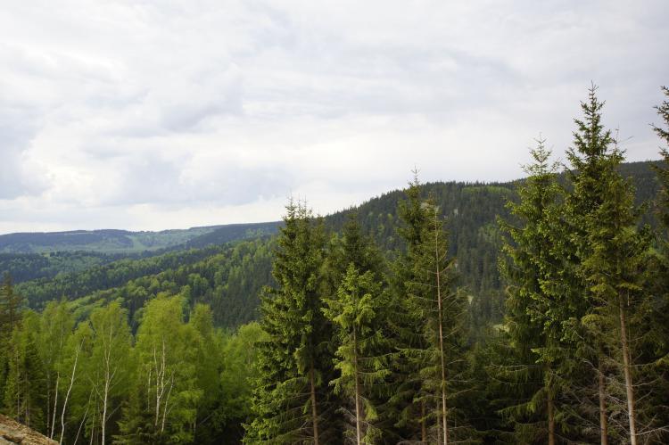 Holiday homeCzech Republic - West Bohemia: Cornelis  [22]