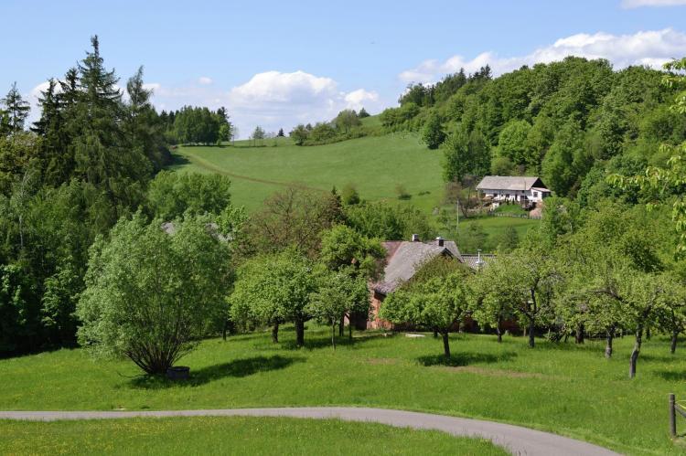 VakantiehuisTsjechië - N-Bohemen/Reuzengebergte: Berghaus  [31]