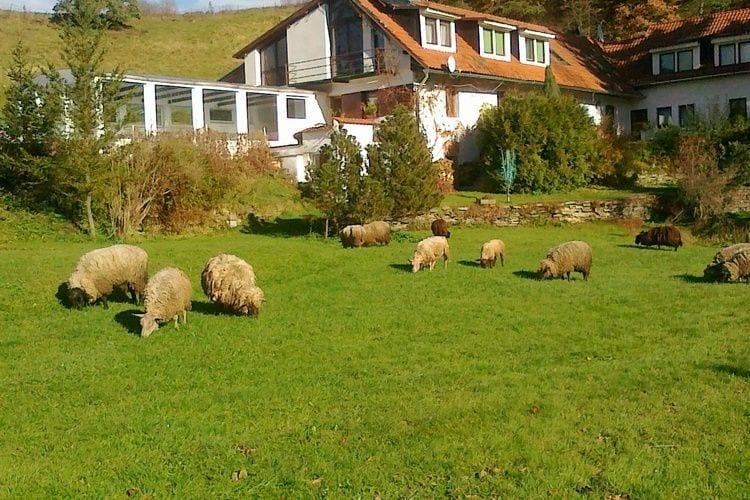 Holiday homeCzech Republic - South Bohemia: Villa Stastny  [5]