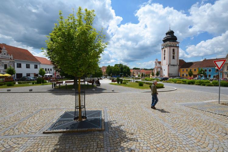 Holiday homeCzech Republic - South Bohemia: Villa Stastny  [26]