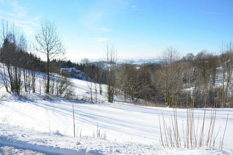 Holiday homeCzech Republic - North Bohemia/Giant Mountains: PEJA  [33]