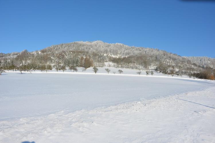Holiday homeCzech Republic - North Bohemia/Giant Mountains: Borivoj  [31]