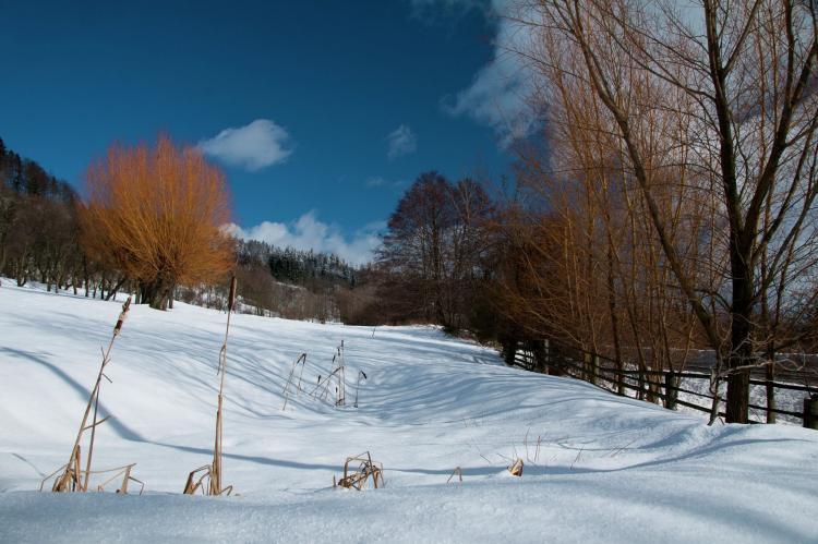 Holiday homeCzech Republic - North Bohemia/Giant Mountains: Borivoj  [32]
