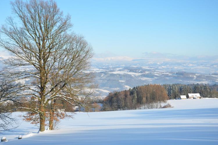 Holiday homeCzech Republic - North Bohemia/Giant Mountains: Borivoj  [38]
