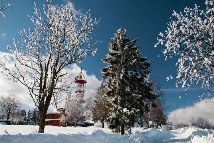 Holiday homeCzech Republic - North Bohemia/Giant Mountains: Borivoj  [33]