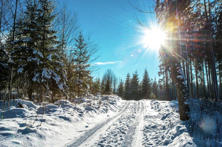 Holiday homeCzech Republic - South Bohemia: Lipno - Nova Lake Resort A  [10]