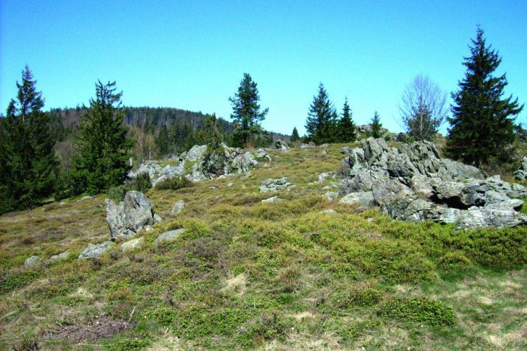 Holiday homeGermany - Bavaria: Am Hochfels  [20]