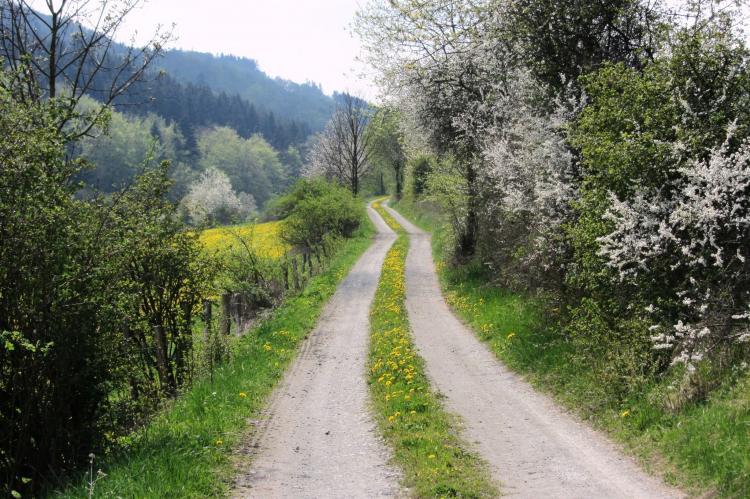VakantiehuisDuitsland - Sauerland: Küstelberg  [35]