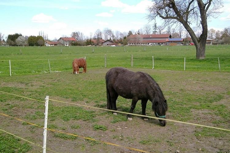 VakantiehuisDuitsland - Beieren: Bauernhaus  [22]
