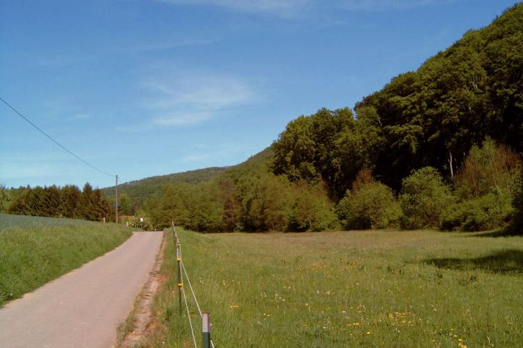 Holiday homeGermany - Weserbergland: Im Weserbergland  [14]