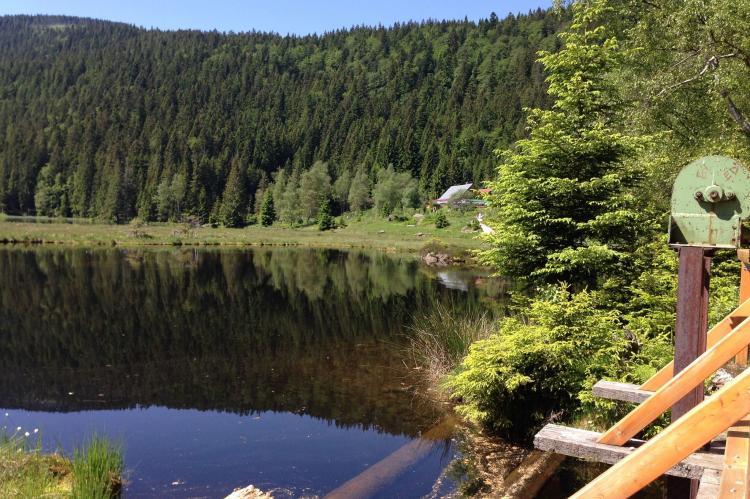 Holiday homeGermany - Bavaria: Bayerischer Wald  [19]