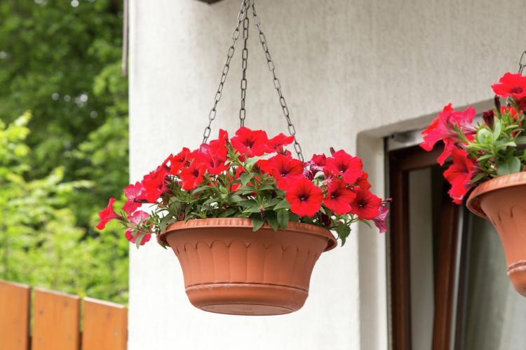 Holiday homeGermany - Sauerland: Medebach  [27]