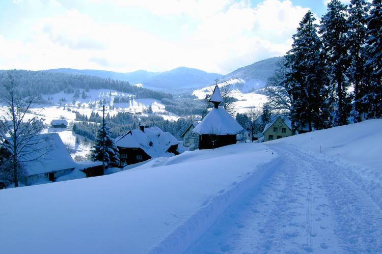 VakantiehuisDuitsland - Zwarte woud: Bernau  [23]