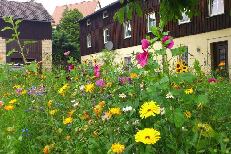 VakantiehuisDuitsland - Saksen: Pfaffenstein  [5]