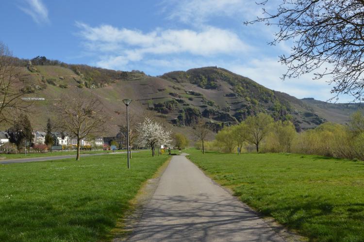 Holiday homeGermany - Rhineland-Palatinate: Zum Weissen Rössel  [34]