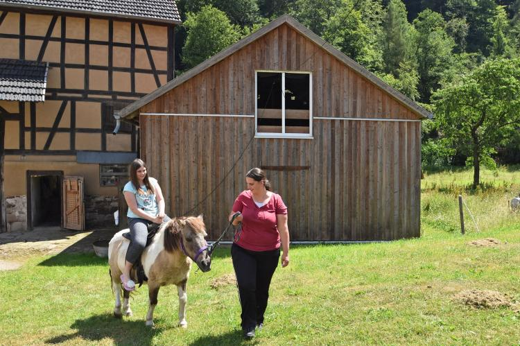 Holiday homeGermany - Hesse: Am Ferienbauernhof - FW 2  [15]