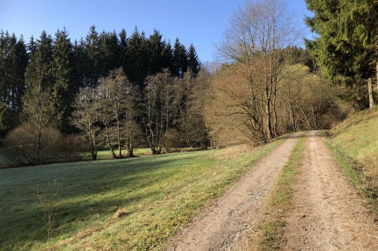 VakantiehuisDuitsland - Eifel: Morgenwald Family  [23]