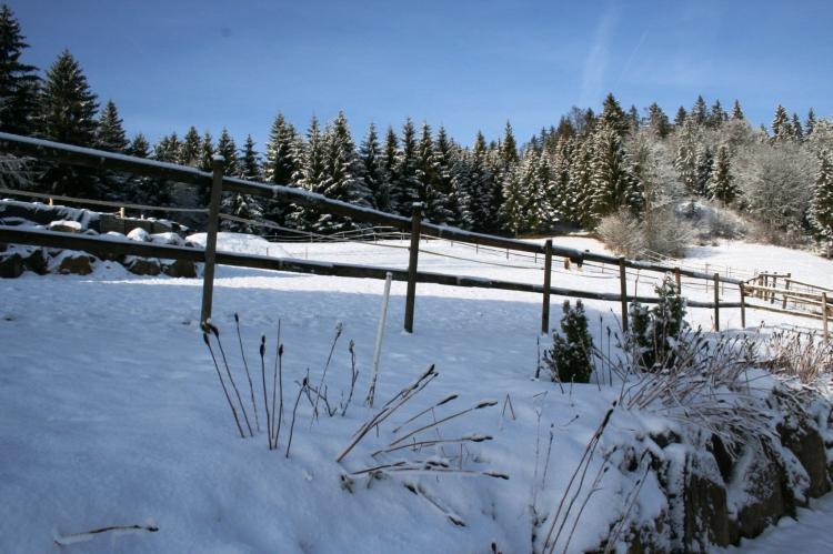 VakantiehuisDuitsland - Zwarte woud: Pferdeklause  [21]