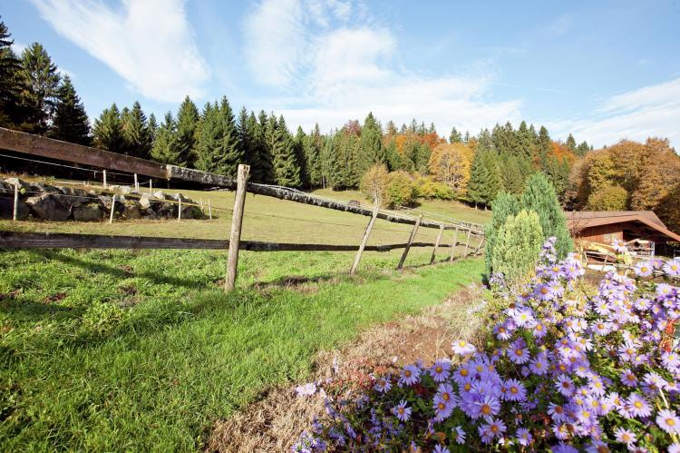 VakantiehuisDuitsland - Zwarte woud: Pferdeklause  [18]