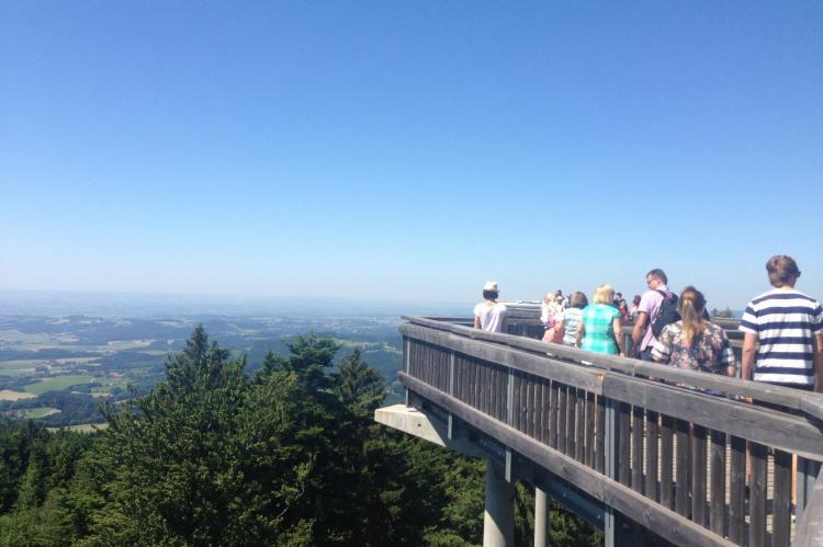 Holiday homeGermany - Bavaria: Im Bayerischen Wald  [29]