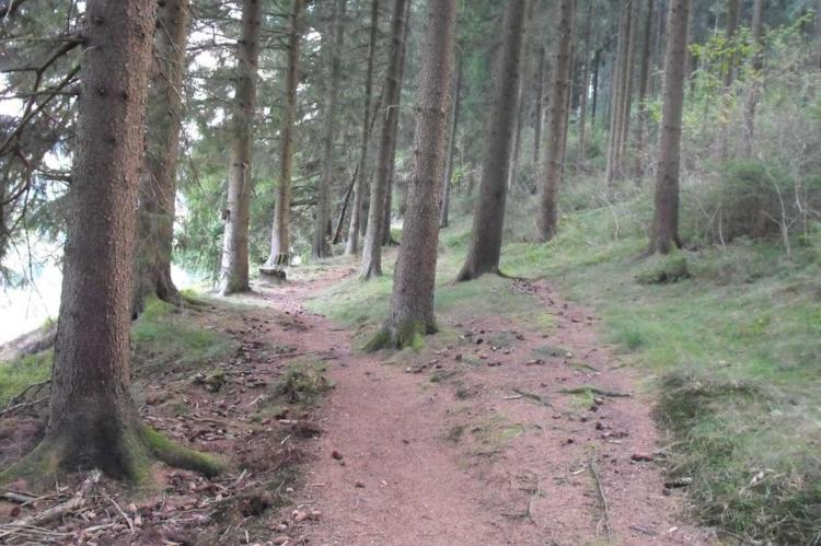 Holiday homeGermany - Harz: Wildemann  [11]