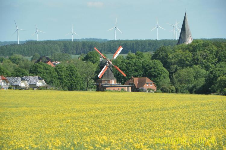 Holiday homeGermany - Mecklenburg-Pomerania: Zur Windmühle  [20]