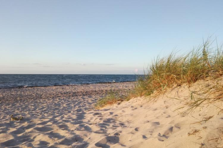 Holiday homeGermany - Mecklenburg-Pomerania: Ferienwohnung Eva mit Meerblick - strandnah  [10]