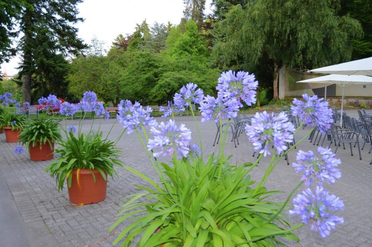 VakantiehuisDuitsland - Hessen: Am Ferienbauernhof - FW 1 und 5  [14]