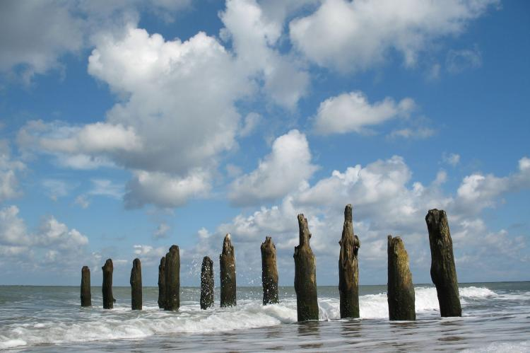 Holiday homeGermany - Mecklenburg-Pomerania: Appartement Strand 03  [12]