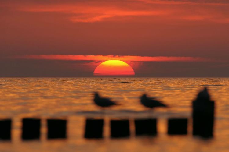 VakantiehuisDuitsland - Mecklenburg-Vorpommern: Ostseeurlaub in der Morgensonne Nr 04  [13]