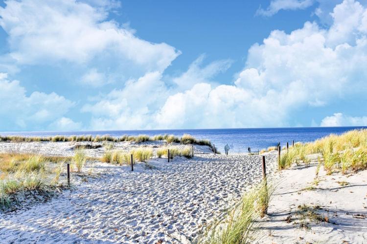 Holiday homeGermany - Mecklenburg-Pomerania: Kobaltblume  [16]