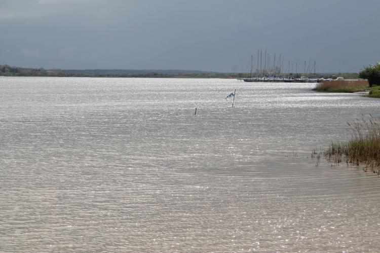 VakantiehuisDuitsland - Mecklenburg-Vorpommern: Inselferien in der Uferschwalbe 3 - großer Garten  [21]