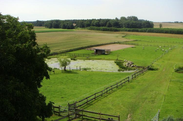 Holiday homeGermany - Mecklenburg-Pomerania: Bauershof bei Tessin  [10]
