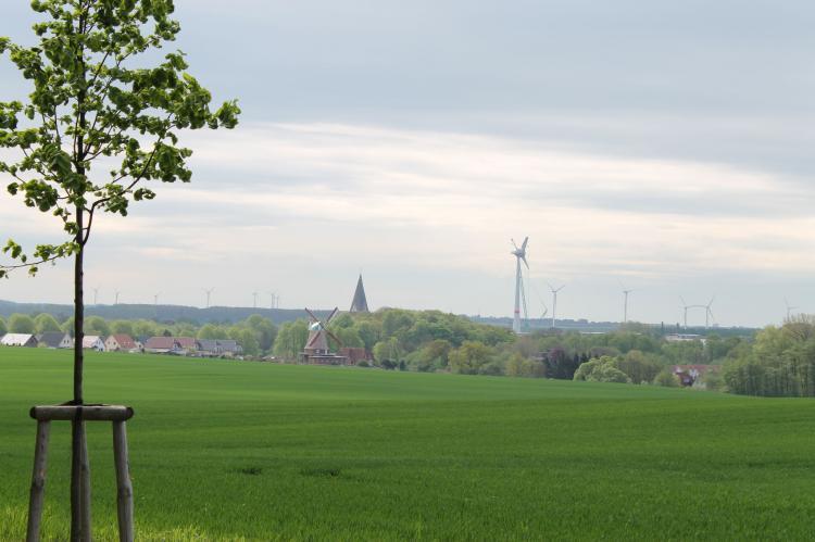 VakantiehuisDuitsland - Mecklenburg-Vorpommern: Bei Ostseebad Rerik  [26]