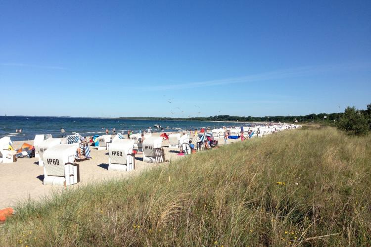 Holiday homeGermany - Mecklenburg-Pomerania: Platz im Grünen 1  [16]