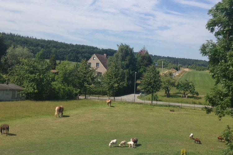 Holiday homeGermany - Mecklenburg-Pomerania: Ferien bei Ostseebad Kühlungsborn 2  [11]