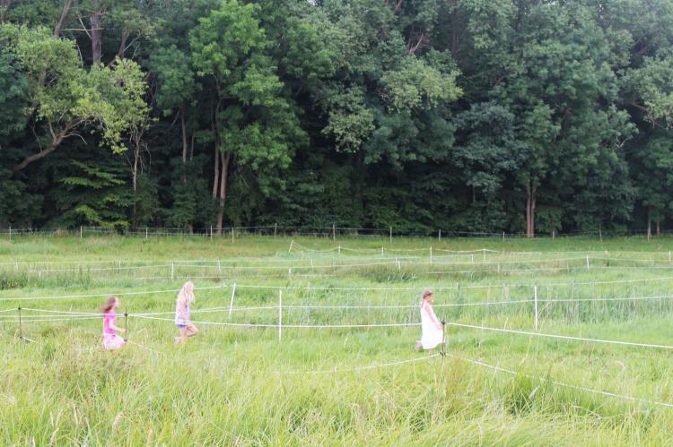 Holiday homeGermany - Mecklenburg-Pomerania: Am Hellbachtal Nr 2  [25]