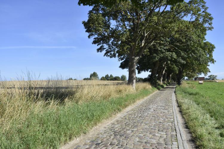 VakantiehuisDuitsland - Mecklenburg-Vorpommern: Ferienwohnung Alte Ziegelei  [13]