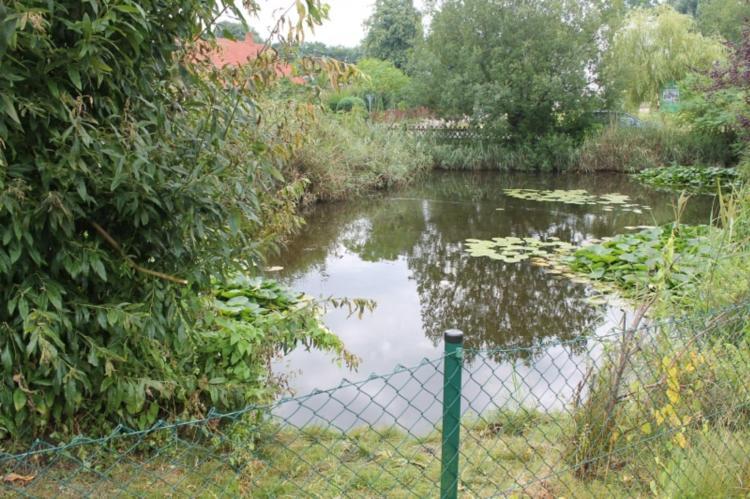 Holiday homeGermany - Mecklenburg-Pomerania: Ostseeurlaub mit Terrasse  [14]